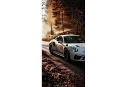 Porsche GT3 ECU BOSCH med 17.1.11